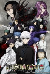 Tokyo Ghoul:re S2 BD Sub Indo